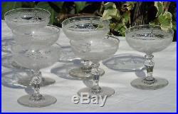 Saint Louis Service de 6 coupes à champagne en cristal gravé, modèle Papin